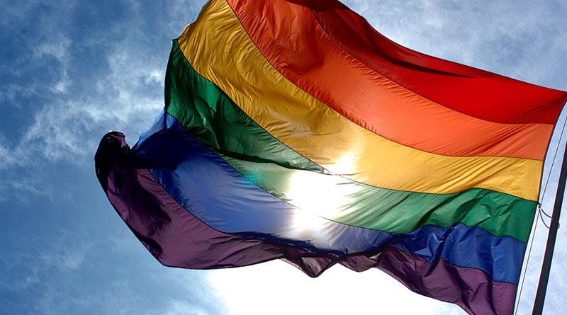 livros sobre homofobia e homoafetividade