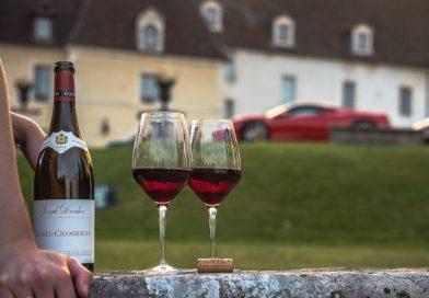 5 Livros sobre Vinho para quem Ama a Bebida