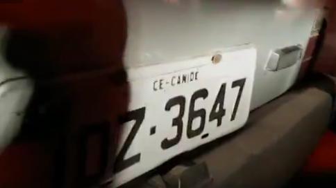 placa-canide